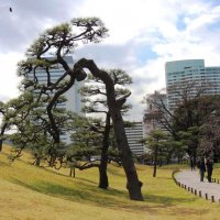 Преемственность в архитектуре Японии :: Гала