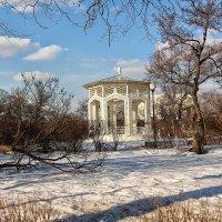 Весенним днём в парке Горького :: Nina Karyuk