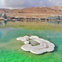 Мёртвое море :: Eddy Eduardo