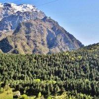 Северная Осетия :: Елена (ЛенаРа)