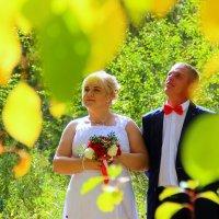Осенняя свадьба :: Владимир Помазан
