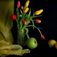Первые тюльпаны... :: Нэля Лысенко