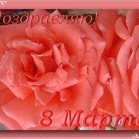 Поздравляю вас с Международным женским днём 8 Марта, дорогие подруги! :: Нина Корешкова