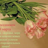 С праздником весны милые дамы! :: Игорь Егоров