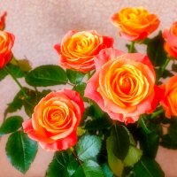 Цветы 8 марта :: Николай Николенко