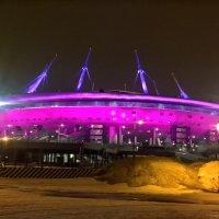 Стадион Санкт Петербург :: Митя Дмитрий Митя