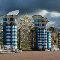В гармонии с небом :: Владимир Соколов