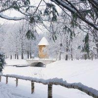 Пиль Башня :: Елена Кейнянен