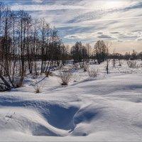 Первые дни марта 4 :: Андрей Дворников