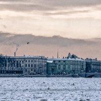 Купол Исаакия и шпиль Адмиралтейства... :: Юрий Велицкий