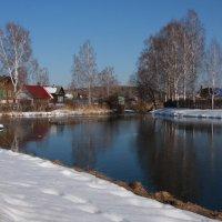 Весенняя мелодия реки... :: Нэля Лысенко