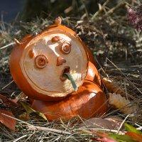 Фестиваль Золотая осень.. :: Наташа *****