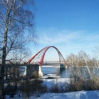 Бугринский мост :: ОКСАНА ЮРЬЕВНА ШВЕЦ