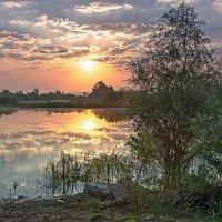 Котовское водохранилище :: Александр Тулупов
