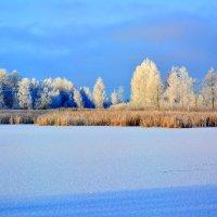 зима :: Uladzimir_m MVV