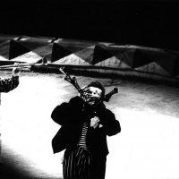 Цирк 1 :: Алексей Кузнецов