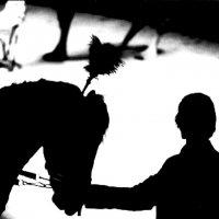 Цирк 2 :: Алексей Кузнецов