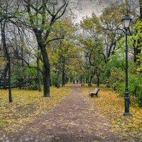 Екатерининский парк в Кронштадте. :: Григорий Евдокимов