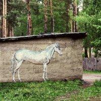 Сельские граффити :: Евгений Кочуров