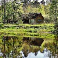 Дом у небольшого озера :: Aida10