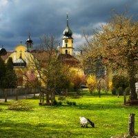 весна в деревне :: Elena Wymann