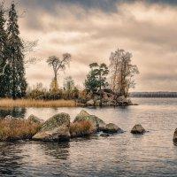 Осень в парке Монрепо. :: Григорий Евдокимов