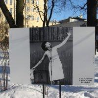 Во дворе Фонтанного дома :: Наталья Герасимова