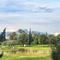 Средиземноморская весна :: Eldar Baykiev
