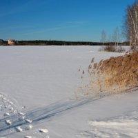Зимний пруд в марте... :: Нэля Лысенко