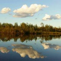 В вечерней тишине :: Геннадий Худолеев