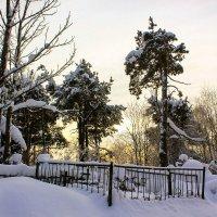 зимним днем на погосте :: Сергей Кочнев