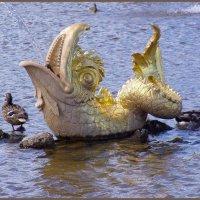 Утка в Петергофе :: vadim