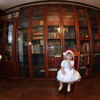 Моя библиотека и маленькая снегурочка! :: Штрек Надежда