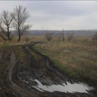 На улице дождик и слякоть... :: Владимир Стаценко