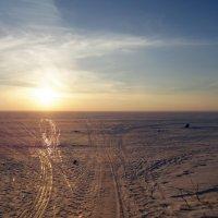 Где то таам ,  вдали,  солнце на горизонте. :: Мила Бовкун