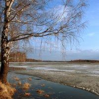 И тает потихоньку лёд... :: Нэля Лысенко