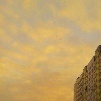 городской закат :: Владимир
