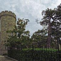 сторожевые башни Воронцовского дворца :: ИРЭН@ .