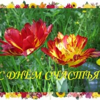 С Днём Счастья! :: Дмитрий Никитин