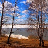На берегу реки :: владимир тимошенко