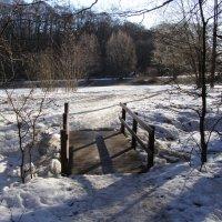 мостик к Ольховому пруду :: Анна Воробьева