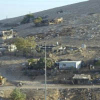 Бедуины Иудейской пустыни. :: Elena Izotova