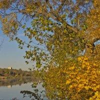 Осенний пейзаж :: Ольга Винницкая (Olenka)