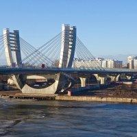 Мост Бетанкура :: Елена
