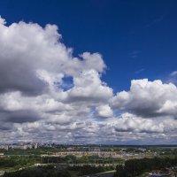 плывут по небу облака :: Петр Беляков