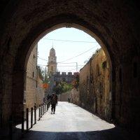 Армянский квартал. Иерусалим :: Гала