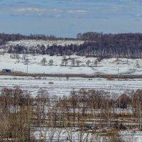 Ещё в полях белеет снег .... :: Анатолий. Chesnavik.