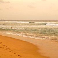 Следы на песке... :: Alex