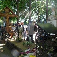 Могилка прозорливого старца. :: Люба