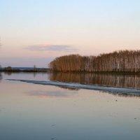 Дрейфует последняя льдина... :: Евгений Юрков